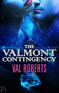 ValmontContingencyCover