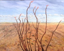 """Ocotillo Stands Alone 20""""x16"""" Oil Painting Price $450.00"""