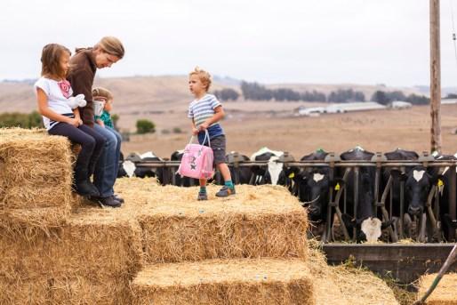 Fun on the hay bales