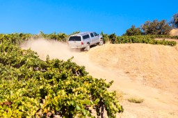 Adventures with the winemaker and her crew up on Alexander Mountain Estate