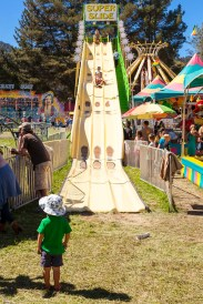 A day in Boonville for the Mendocino County Fair