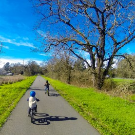 Beautiful day for a ride to Sebastopol