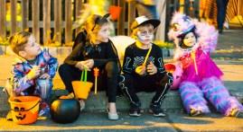 Halloween 2017 in Healdsburg