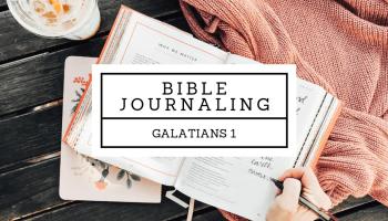 Live Free Summer Bible Study