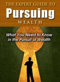 The_Expert_Guide_To_Pursuing_Wealth