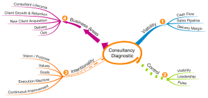 Consultancy Diagnostic Service Process