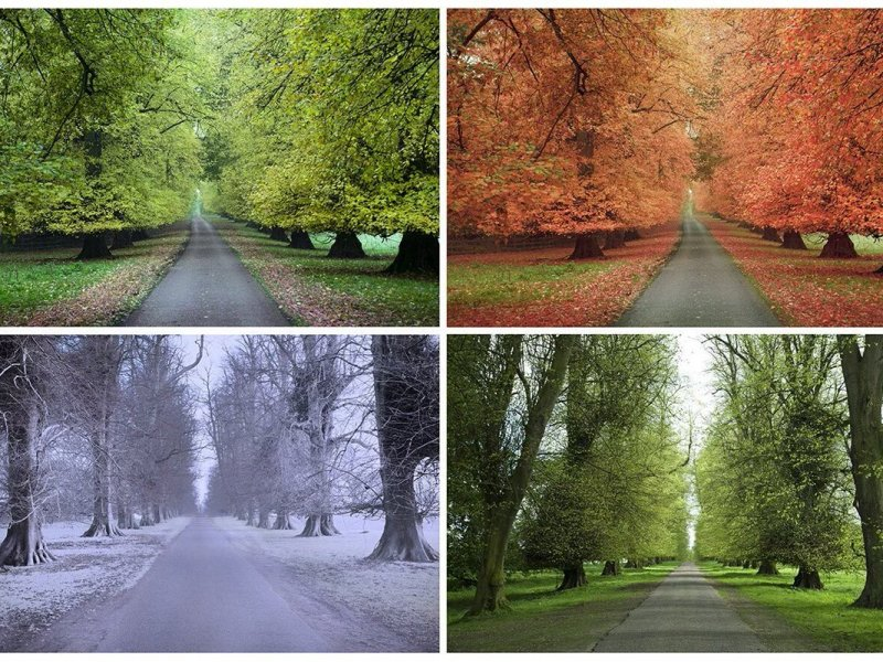 4 seasons, four seasons