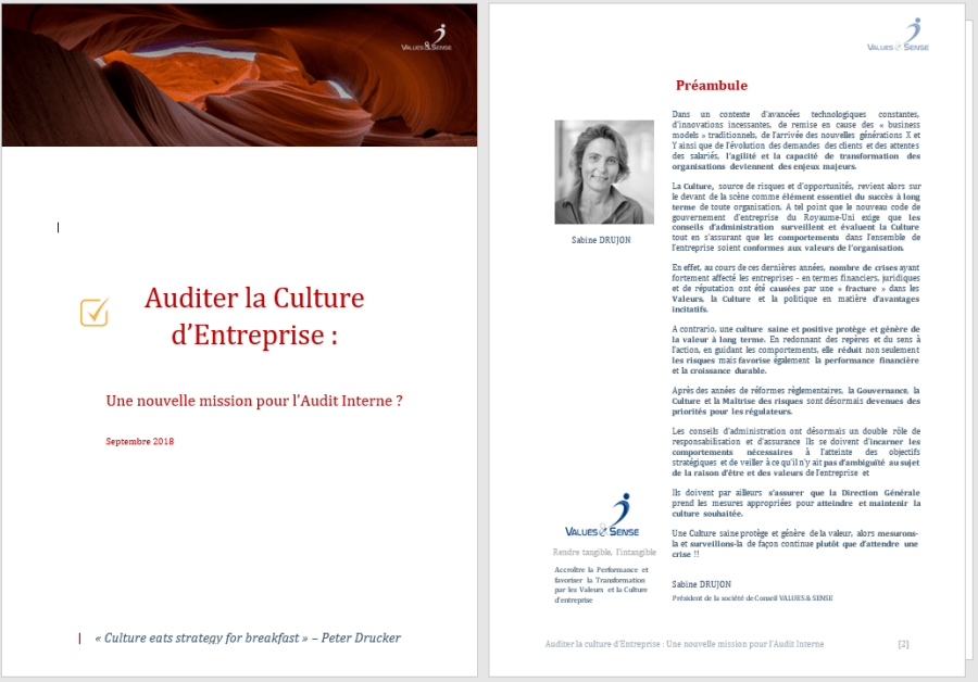 Livre Blanc Audit Culturel