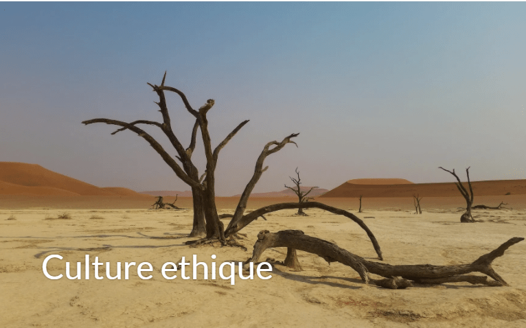 https://values-sense.com/culture-ethique/
