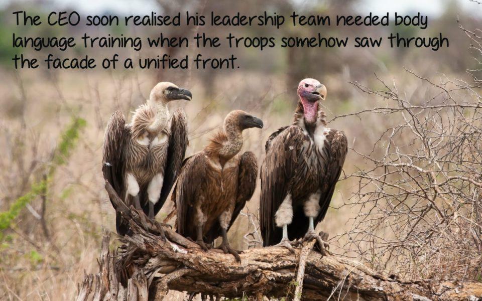 Board Unity