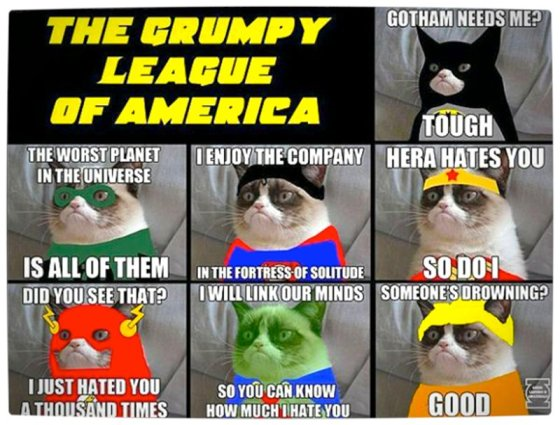 Vamers - Artistry - Humour - The Grumpy League of America featuring Tardis the Grumpy Cat