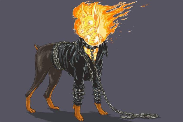 Vamers - Artistry - Fandom - Artist Josh Lynch Imagines Dogs as Superheroes from the Marvel Universe - Ghost Rider