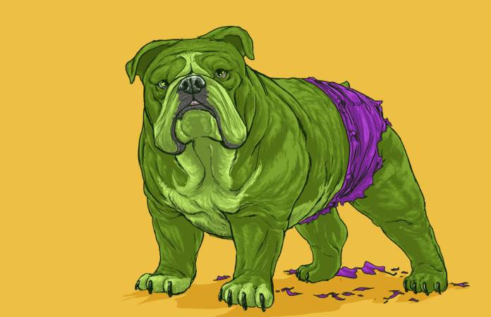 Vamers - Artistry - Fandom - Artist Josh Lynch Imagines Dogs as Superheroes from the Marvel Universe - Hulk
