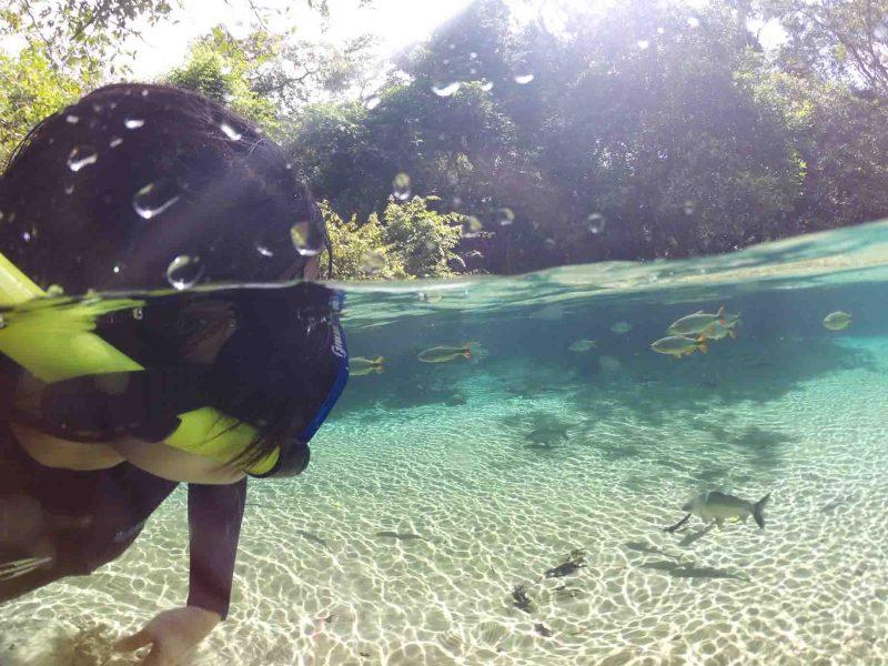mergulho em Bonito MS
