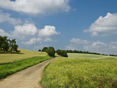 Lo bueno de vivir en el campo.