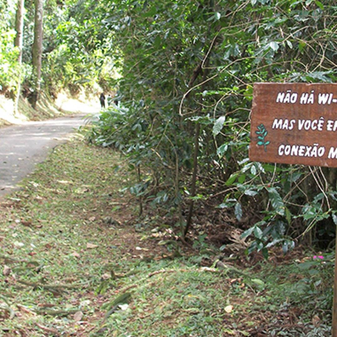 Pedra Grande - Parque da Cantareira