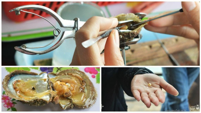 fabrizcação de pérola sintética, Vietnã