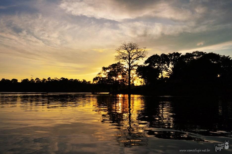 Nascer do sol floresta amazônica 2
