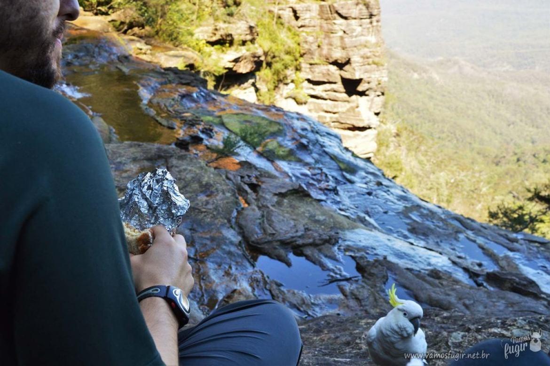 O que fazer nas Blue Mountains