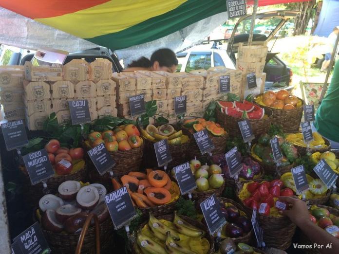 produtos vendidos na feira do cerrado