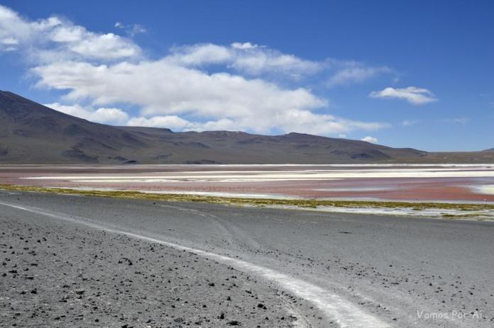 Laguna Colorada: Passeio de 1 dia