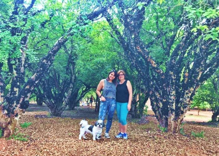 fazenda jabuticabal aceita pets, fazenda jabuticabal pode levar cachorro, passeios que podem levar cachorro em Goiânia