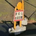 まむし出没注意:静岡県浜松市