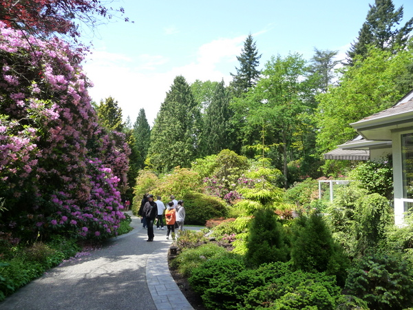 带你游花园:Glades Garden