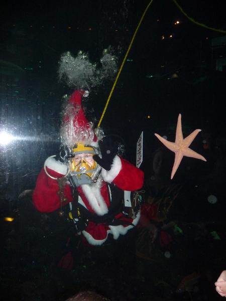祝大家圣诞快乐!