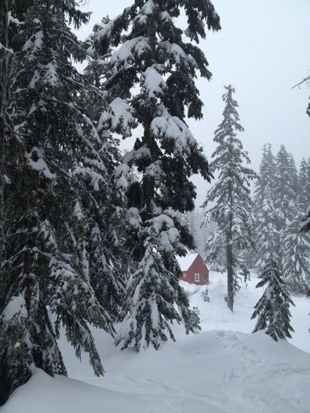 林海雪原中一红色小屋。