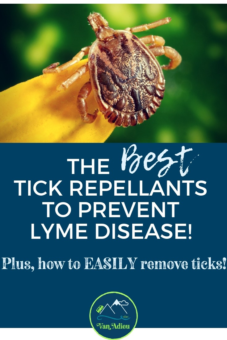 The Most Effective Ways to Prevent Ticks and Remove Ticks ...