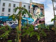 An image of a mural overlooking a garden