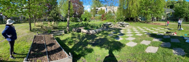 A summertime image of the Queen Alexandra School garden