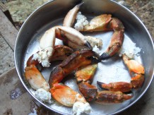 Delicious rock crab claws