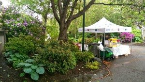 kid-friendly vancouver Telus Popcorn Tent