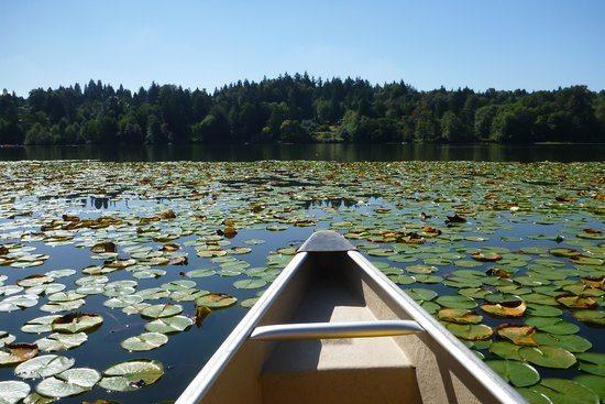 deer-lake-boat-rentals