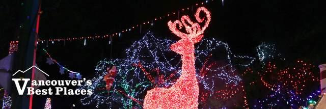 Bright Nights Deer Illuminations