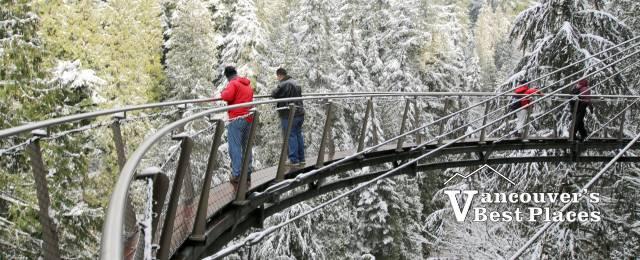 Capilano Cliff Walk in Snow