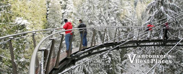 Capilano Cliff Walk in Snow