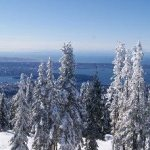 View from Grouse Mountain's restaurants in the winter