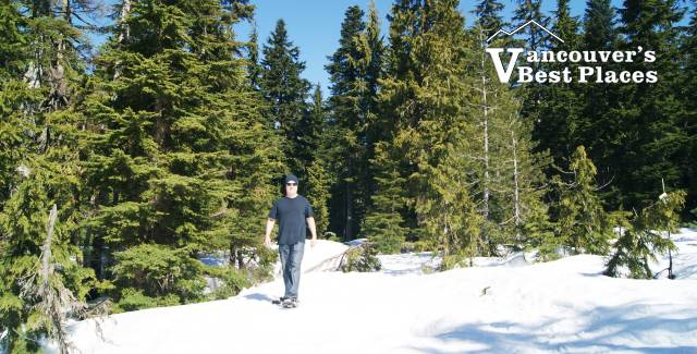 Snowshoeing on the North Shore