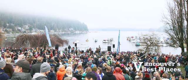Deep Cove Penguin Plunge Crowds