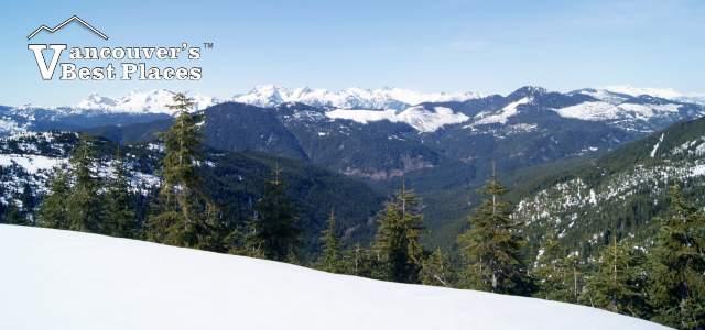 Sasquatch Mountain View