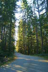 Seymour Valley Trailway