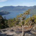 View of Howe Sound from the top of the Stawamus Chief mountain