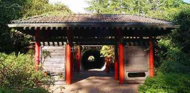 UBC Botanical Garden Tunnel