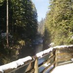 Lookout view of Capilano River