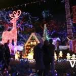 Bright Nights Christmas Illuminations
