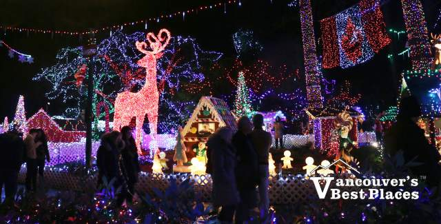 Bright Nights Christmas Illuminations
