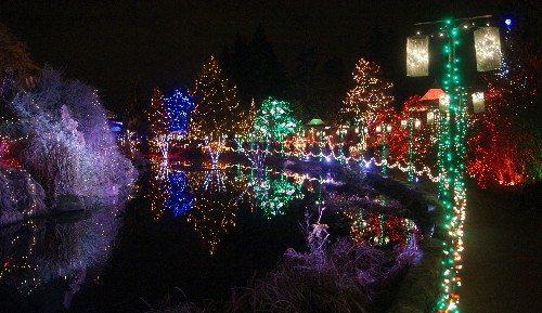 VanDusen Garden Christmas Lights Promenade